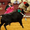 Campo Pequeno, The Portuguese bullfight is a truly unique experience